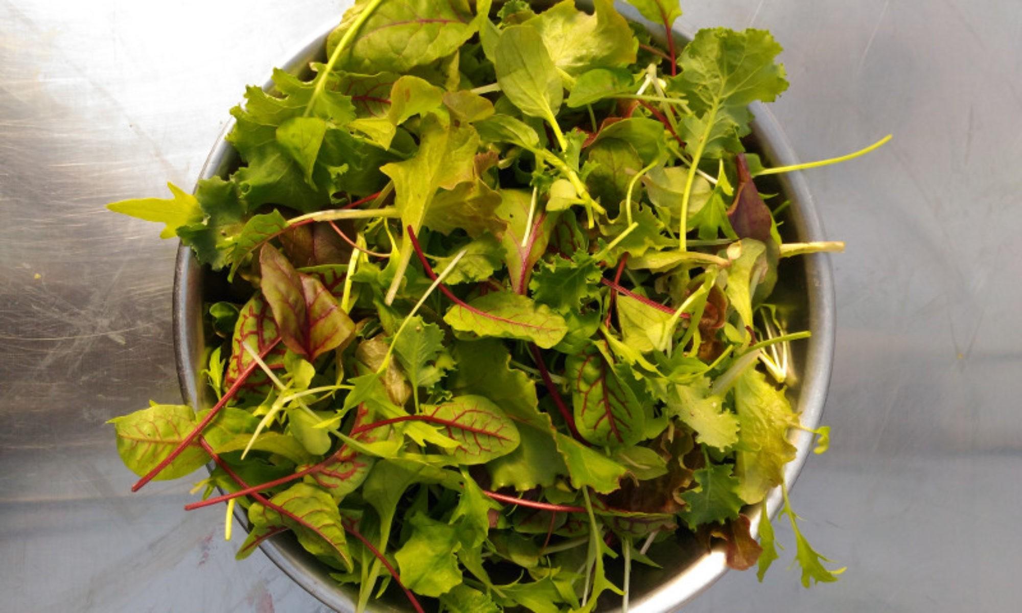 Burt's Greenhouses Veggie Sales